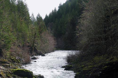 The upper Molalla River in Molalla, Oregon.
