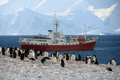 "Rates for <em>The Antarctic Dream</em> (tel. <strong>800/344-6118</strong>; <strong><a href=""http://www.alvoyages.com/ships/antarctic-dream/13/"" target=""_blank"">www.alvoyages.com/ships/antarctic-dream/13/</a></strong>) are among the most reasonable currently available for Antarctic cruises, and through August 31st, you can save 10% on any cabins on its ship departing on December 7th. This cruise operator is also offering a 3-day camping trip option, led by specialized guides and including equipment; call or check the website for details."