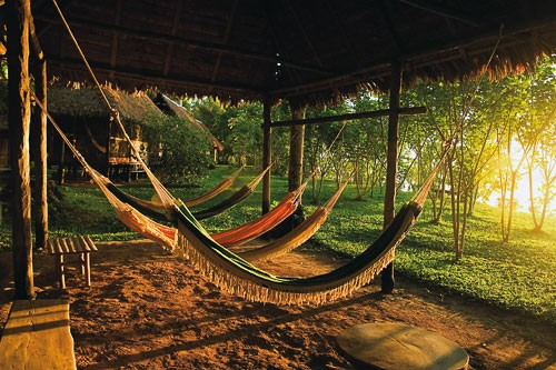 Hammocks outside a lodge on the Madre de Dios River in Peru's Tambopata National Reserve.