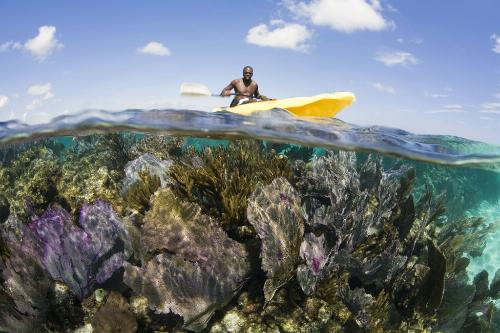 10 great places to see coral reefs