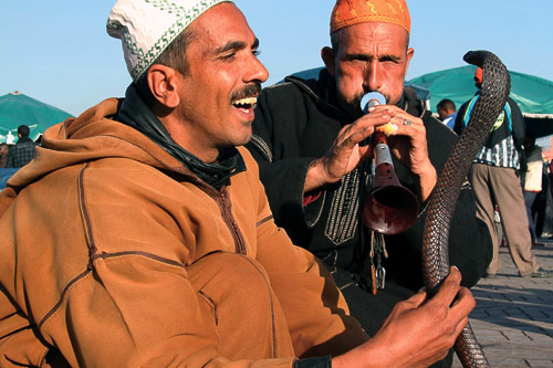 Be hypnotized by snake charmers on Jemaa el Fna.