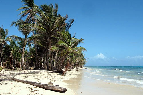 The beach side of Little Corn Island, Nicaragua.