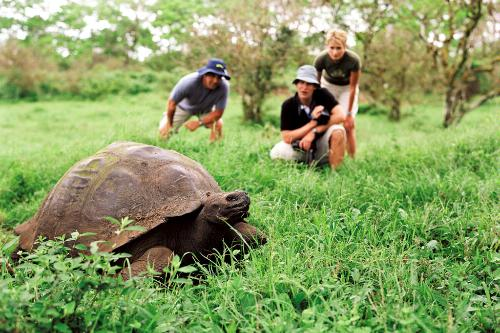 Guests on Lindblad Expeditions, observing Galapagos tortoise in the Galapagos Islands.